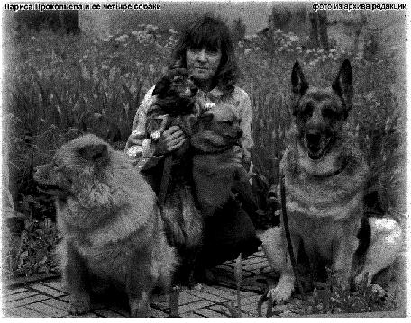 Лариса Прокопьева и ее четыре собаки